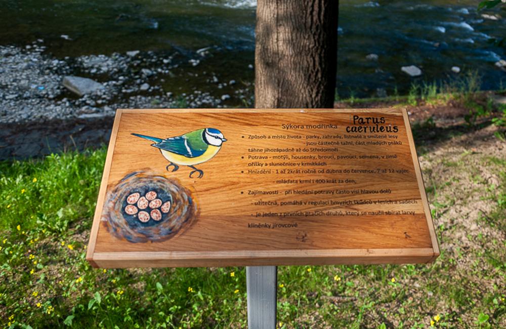 Projekt ptačích budek, informačních cedulí a obnova nábřeží Olše v městské části Kontešinec